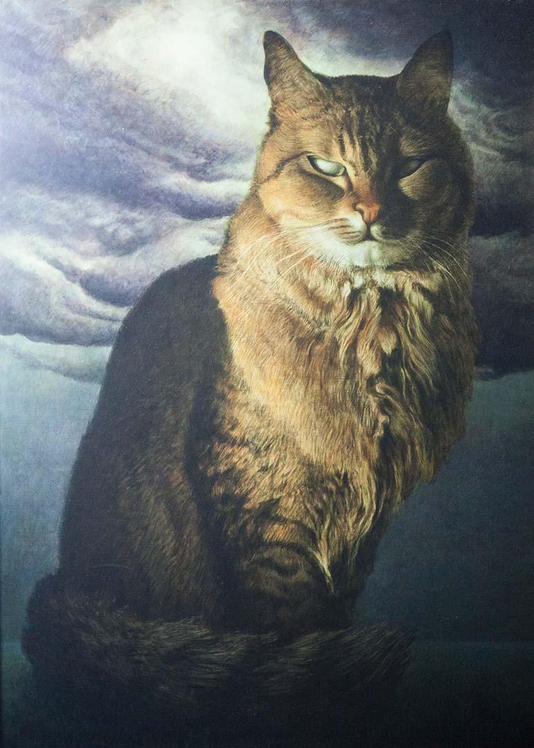 Dignitosamente gatto – OLIO SU TELA, 60×80 cm